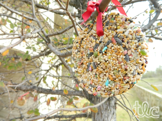 Bird Seed Ornaments (5) copy
